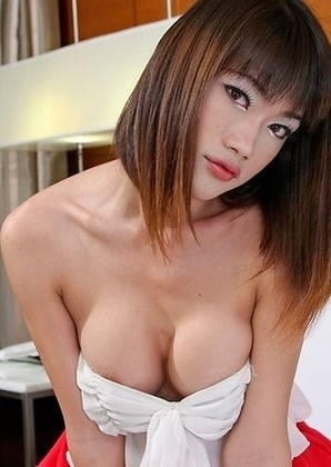 Asian Femboy - Bee