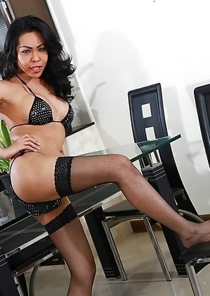 Exotic tgirl Leo posing in stockings