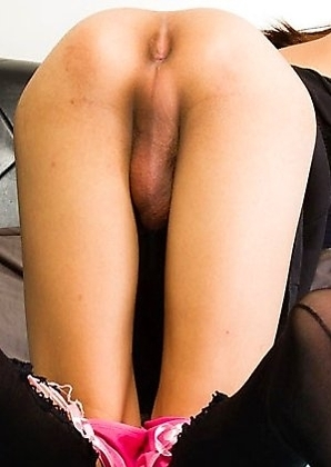 Thai shemale Meeni has a hot slim body, budding hormone breasts and a huge hard cock!